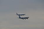 todotaさんが、羽田空港で撮影した全日空 A320-211の航空フォト(写真)