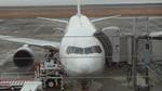 AE31Xさんが、大分空港で撮影した全日空 767-381の航空フォト(写真)
