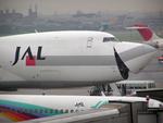 たぁさんが、名古屋飛行場で撮影した日本航空 747-246Fの航空フォト(写真)
