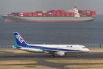 hiko_chunenさんが、羽田空港で撮影した全日空 A320-211の航空フォト(写真)