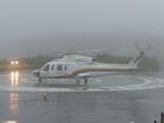 やすさんが、青ヶ島ヘリポートで撮影した東邦航空 S-76C++の航空フォト(写真)
