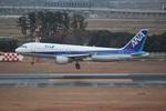 cassiopeiaさんが、仙台空港で撮影した全日空 A320-211の航空フォト(写真)