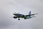 たろさんが、那覇空港で撮影した全日空 A320-211の航空フォト(写真)