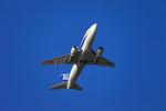たろさんが、那覇空港で撮影したANAウイングス 737-5L9の航空フォト(写真)
