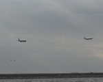 ぺペロンチさんが、羽田空港で撮影した全日空 A320-211の航空フォト(写真)