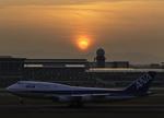 アローズさんが、福岡空港で撮影した全日空 777-281の航空フォト(写真)
