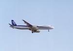 ギ―ピロさんが、羽田空港で撮影した全日空 A321-131の航空フォト(写真)
