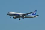 B747‐400さんが、羽田空港で撮影した全日空 A320-211の航空フォト(写真)
