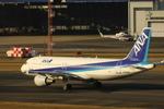 新海 元さんが、福岡空港で撮影した全日空 A320-211の航空フォト(写真)