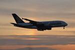 タマさんが、成田国際空港で撮影したシンガポール航空 A380-841の航空フォト(写真)
