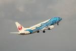 アイスコーヒーさんが、中部国際空港で撮影した全日空 A320-211の航空フォト(写真)