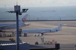 名古屋こうちゃんさんが、羽田空港で撮影した日本航空 MD-90-30の航空フォト(写真)