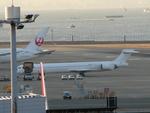 たみぃさんが、羽田空港で撮影した日本航空 MD-90-30の航空フォト(写真)