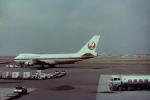 ねこたさんが、新千歳空港で撮影した日本航空 747SR-46の航空フォト(写真)
