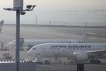 ゆーきさんが、羽田空港で撮影した日本航空 MD-90-30の航空フォト(写真)