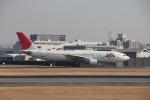 豆助さんが、伊丹空港で撮影した日本航空 A300B4-622Rの航空フォト(写真)