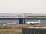 ケメルストレートさんが、羽田空港で撮影した日本航空 MD-90-30の航空フォト(写真)