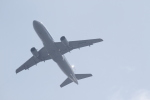 やまさんが、成田国際空港で撮影した全日空 A320-214の航空フォト(写真)