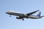 あおちゃんさんが、名古屋飛行場で撮影した全日空 A321-131の航空フォト(写真)