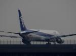 ぺペロンチさんが、羽田空港で撮影した日本航空 MD-11の航空フォト(写真)