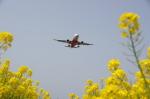 pringlesさんが、福岡空港で撮影したエアアジア・ジャパン(〜2013) A320-216の航空フォト(写真)