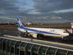 ◆oRT4jqzTBUさんが、松山空港で撮影した全日空 767-381の航空フォト(写真)