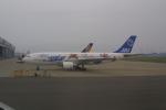 meijeanさんが、羽田空港で撮影した日本エアシステム A300B2K-3Cの航空フォト(写真)