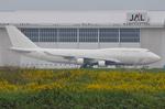 ぶる~すかい。さんが、成田国際空港で撮影した日本航空 747-446(BCF)の航空フォト(写真)