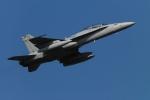 もえさんが、横田基地で撮影したアメリカ海兵隊 F/A-18D Hornetの航空フォト(写真)