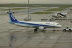 sumiさんが、中部国際空港で撮影した全日空 A320-211の航空フォト(写真)