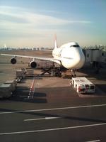 BMW320iさんが、羽田空港で撮影した日本航空 747-446Dの航空フォト(写真)