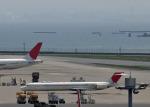 おこ茶さんが、羽田空港で撮影した日本航空 MD-90-30の航空フォト(写真)