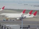 ゆーきさんが、羽田空港で撮影した日本航空 A300B4-622Rの航空フォト(写真)