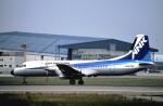 ニャーポンさんが、伊丹空港で撮影したエアーニッポン YS-11A-500の航空フォト(写真)