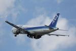 ニャーポンさんが、伊丹空港で撮影した全日空 A320-211の航空フォト(写真)