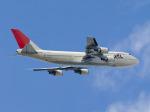 みなかもさんが、羽田空港で撮影した日本航空 747-446Dの航空フォト(写真)