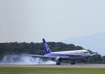 よしこさんが、広島空港で撮影した日本航空 767-346の航空フォト(写真)