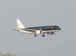 aquaさんが、羽田空港で撮影したスターフライヤー A320-214の航空フォト(写真)