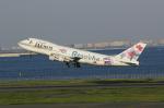 taka2217さんが、羽田空港で撮影したJALウェイズ 747-246Bの航空フォト(写真)