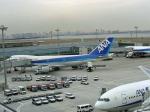 hiroひろさんが、羽田空港で撮影した全日空 747SR-81の航空フォト(写真)