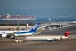Constantfenixさんが、羽田空港で撮影した日本航空 MD-90-30の航空フォト(写真)