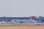 だいせんさんが、成田国際空港で撮影した日本航空 747-446の航空フォト(写真)