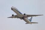 たろさんが、関西国際空港で撮影した全日空 777-381の航空フォト(写真)