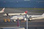 NZL32さんが、羽田空港で撮影した日本航空 MD-90-30の航空フォト(写真)
