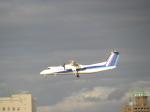 ジャガイモさんが、伊丹空港で撮影したANAウイングス DHC-8-314Q Dash 8の航空フォト(写真)