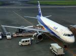 Co-pilootjeさんが、宮崎空港で撮影した全日空 A320-211の航空フォト(写真)