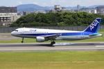 akihito114さんが、伊丹空港で撮影した全日空 A320-211の航空フォト(写真)