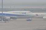 STAR☆ALLIANCEさんが、羽田空港で撮影した全日空 747-481(D)の航空フォト(写真)