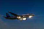 quamen88さんが、伊丹空港で撮影した全日空 A320-211の航空フォト(写真)