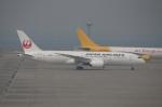 なごやんさんが、中部国際空港で撮影した日本航空 787-8 Dreamlinerの航空フォト(写真)